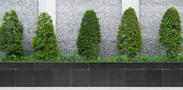Landscape Design Toronto